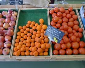 Viocultura Organic Grocery