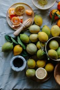 citrus -3338