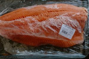 Foodsaver Salmon-6303