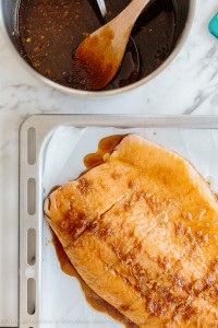 Foodsaver - Salmon Edited - Web-6329