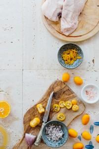 Web Quality Foodsaver Orange Duck-7808