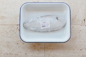 Foodsaver Fish Pie Recipe -7979