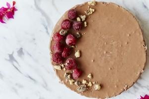 Foodsaver Frozen Chocolate Cheesecake foodsaver Chocolate Cake1166 1