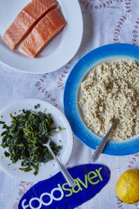 Foodsaver September Salmon Foodsaver - September - Salmon1530