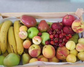 The Fruit Boutique