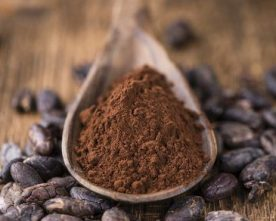 Cacao Christmas Treats Workshop